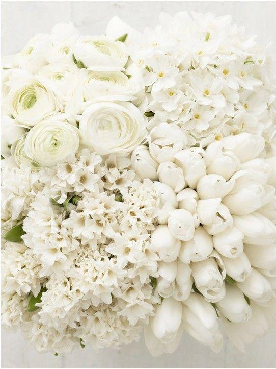 Inspiration florale - février / mars