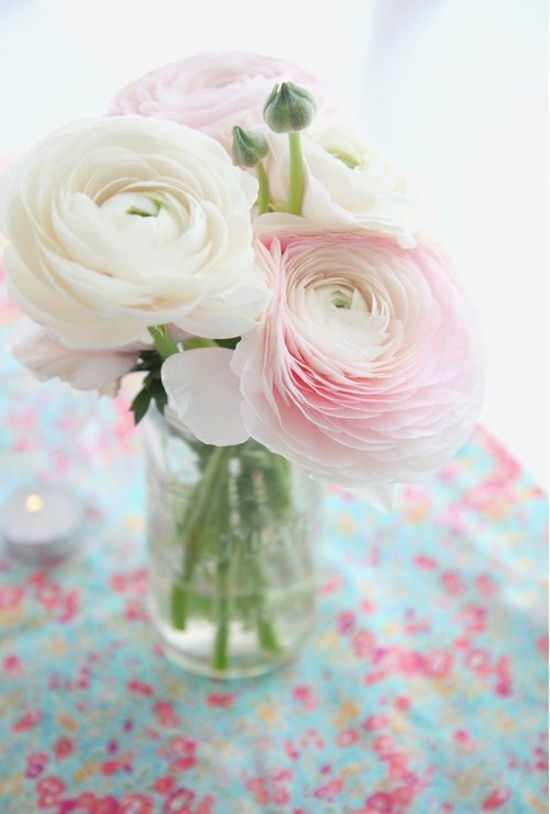 Fleurs mariage juif   Renoncules