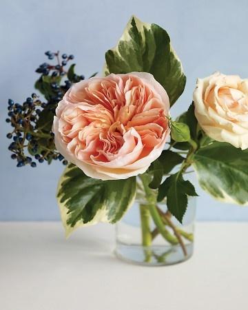 Fleurs mariage juif   Roses Vuvuzela